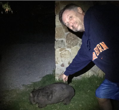 ed and wombat